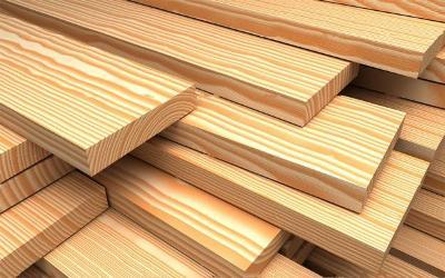 Особенности древесины и ее обработки