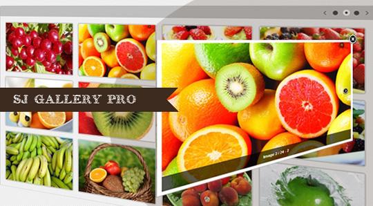 SJ Gallery Pro